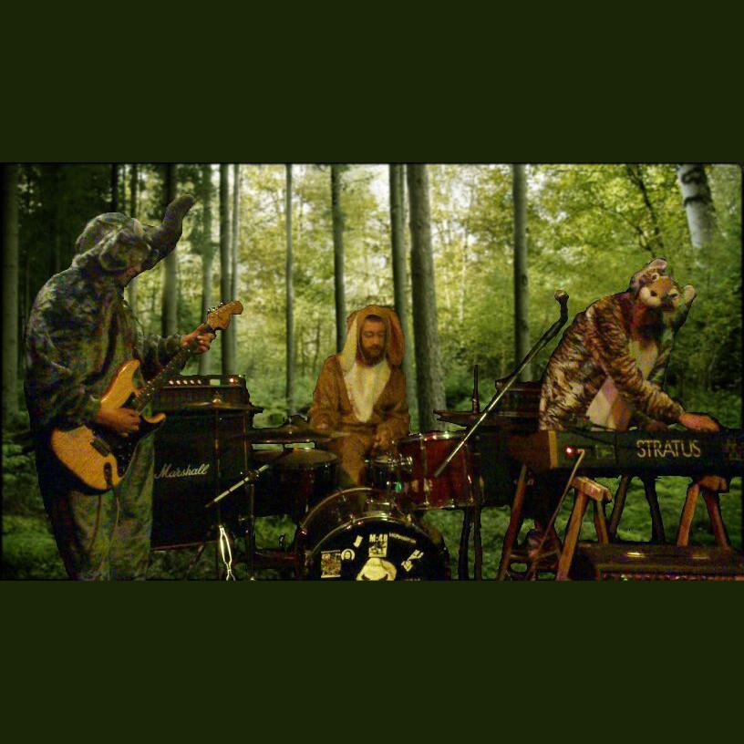 Dieren in het bos